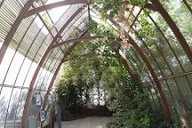 Jardin Flottant Niki de Saint Phalle, Paris, France