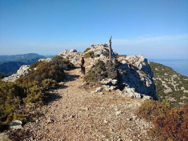 Puig des Teix
