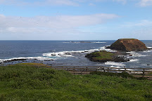 The Nobbies, Phillip Island, Australia