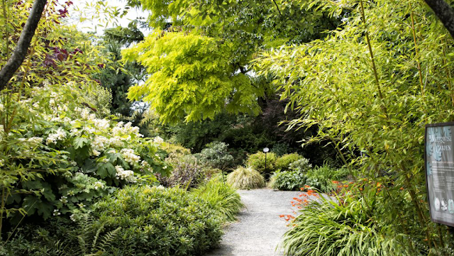 List item Bellevue Botanical Garden image
