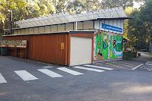 Downfall Creek Bushland Centre, Brisbane, Australia