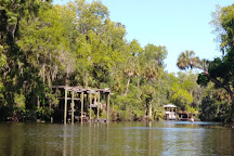 Alafia Scrub Nature Preserve, Riverview, United States