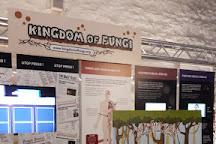Aberdeen Science Centre, Aberdeen, United Kingdom