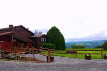 Castel Grisch, Watkins Glen, United States