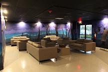 Evolution Escape Rooms, Fort Lauderdale, United States