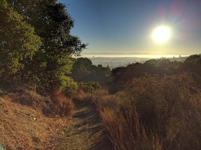 Portola Valley CA