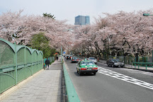 Aoyama Cemetery, Minato, Japan