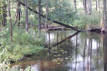 Czarna Hancza River, Suwalki, Poland