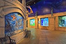 Long Island Aquarium, Riverhead, United States