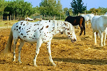 El Rancho, Le Grau-du-Roi, France
