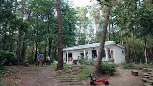 Vakantiehuis 'de bos' : Langdorp