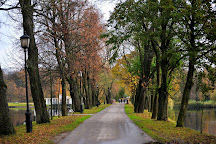 Belovezhskaya Pushha / Bialowieza Forest, Kamianiuki, Belarus