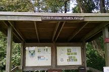Emilie Ruecker Wildlife Refuge, Tiverton, United States