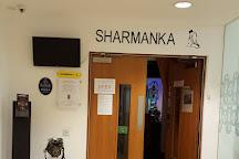 Sharmanka Kinetic Theatre, Glasgow, United Kingdom