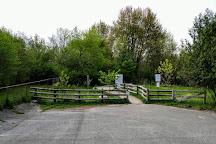 Sifton Bog, London, Canada