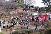 Okurayama Park, Yokohama, Japan