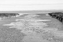 Cedar Island National Wildlife Refuge, Beaufort, United States