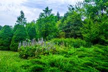 Stavropol Botanical Garden, Stavropol, Russia