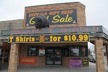 Buffalo Gift Shop, Wall, United States