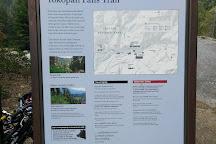 Tokopah Falls, Three Rivers, United States