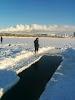 стоянка сургутских моржей - федереация зимнего плавания