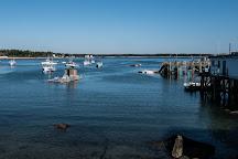Schoodic Peninsula, Bar Harbor, United States