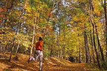 West Rock Ridge State Park, Hamden, United States