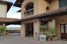 Azienda Agricola Elio Altare, La Morra, Italy