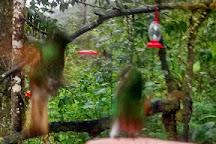 Pacha Quindi Nature Refuge, Tandayapa, Ecuador