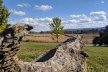 State Arboretum of Virginia, Boyce, United States