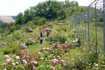 Museo Giardino della Rosa Antica, Serramazzoni, Italy