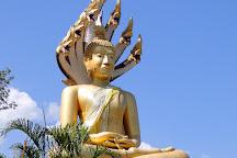 Wat Sopanaram temple, Mae Rim, Thailand