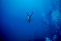 Bubbles Club for Divers, Byblos, Lebanon