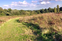 Stanmore County Park, Stanmore, United Kingdom