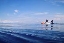 Ousia Freediving Academy, Pemuteran, Indonesia