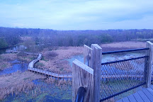 Galien River County Park, New Buffalo, United States