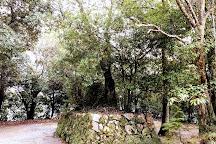 Hazu Hachiman Shrine, Takarazuka, Japan