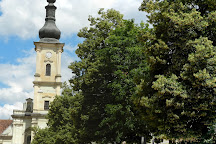 Franciscan Church, Cluj-Napoca, Romania