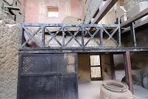 Partem Domus lignea - Casa del Tramezzo di Legno, Ercolano, Italy
