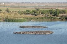 Salton Sea National Wildlife Refuge, Calipatria, United States