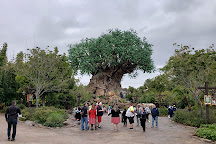 Tree of Life, Orlando, United States