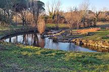 Selva di Paliano, Paliano, Italy