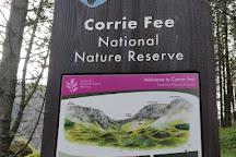 Corrie Fee National Nature Reserve, Angus, United Kingdom