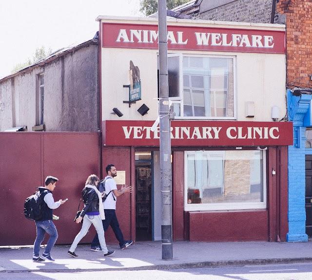 Animal Welfare Veterinary Clinic