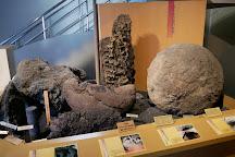 Narusawa Mt. Fuji Museum, Narusawa-mura, Japan