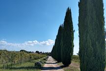 Azienda Vitivinicola Villa Corano, Pitigliano, Italy