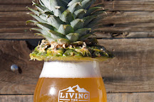 Living The Dream Brewing Company, Littleton, United States
