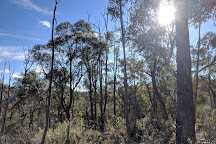Bungonia State Conservation Area, Goulburn, Australia