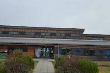 Idle Valley Nature Reserve (Notts Wildlife Trust), Retford, United Kingdom