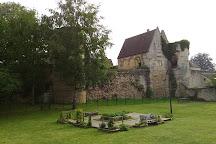 Foret d'Ermenonville, Ermenonville, France